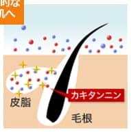 柿タンニンが毛穴の皮脂腺に入り込んでいるように見受けられます。